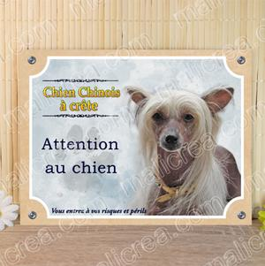 Plaque chien chinois nu