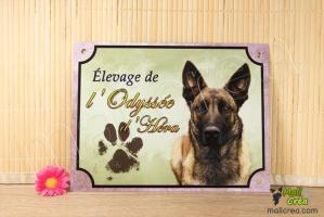 Plaque personnalisee affiche elevage canin malinois odyssee hera